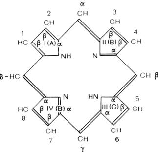Структура молекулы порфина [71]