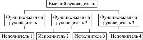 СИСТЕМА УПРАВЛЕНИЯ ОРГАНИЗАЦИЕЙ СТРУКТУРА ОРГАНИЗАЦИИ Экономика  Функциональная структура управления организацией